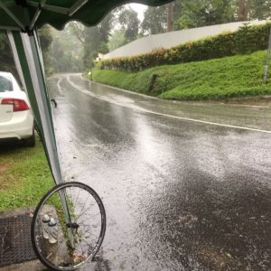 Everesting Singapore - Rain plagued the afternoon - Iron Mike Musing